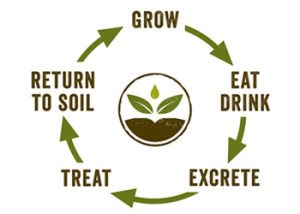 Human Nutrient Cycle